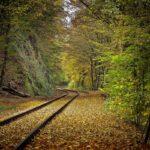 rail-tracks